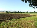 Fields near Horham community centre - geograph.org.uk - 472437.jpg