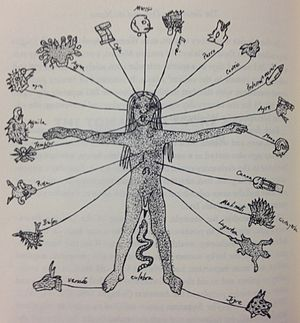 Tonalli - Figure with 20 day signs of ancient Mexica attached to parts of the body in place of the astrological signs assigned to them in Europe.