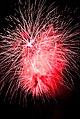 Fireworks 20100724- DSC9031 (4831965417).jpg