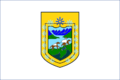 Flag of Aysen Actual.PNG