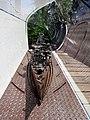 Fleet by Peter McFarlane (7410714962).jpg