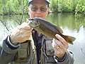 Fly Fishing A Smallmouth Bass Pond (8375347741).jpg