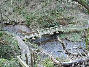 Pease Bay - Pease Dean footbridge