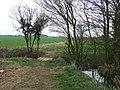 Footbridge - geograph.org.uk - 1770820.jpg