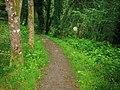 Footpath, Top Carpark, Colby Lodge - National Trust Gardens - geograph.org.uk - 1370062.jpg