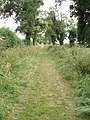 Footpath - geograph.org.uk - 190606.jpg