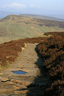 Footpath Over Cringle Moor - geograph.org.uk - 377667