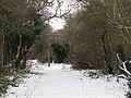Footpath from Elmstead to Chislehurst - geograph.org.uk - 1655723.jpg