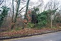 Footpath leading off Park Wood Rd, University of Kent - geograph.org.uk - 1132161.jpg
