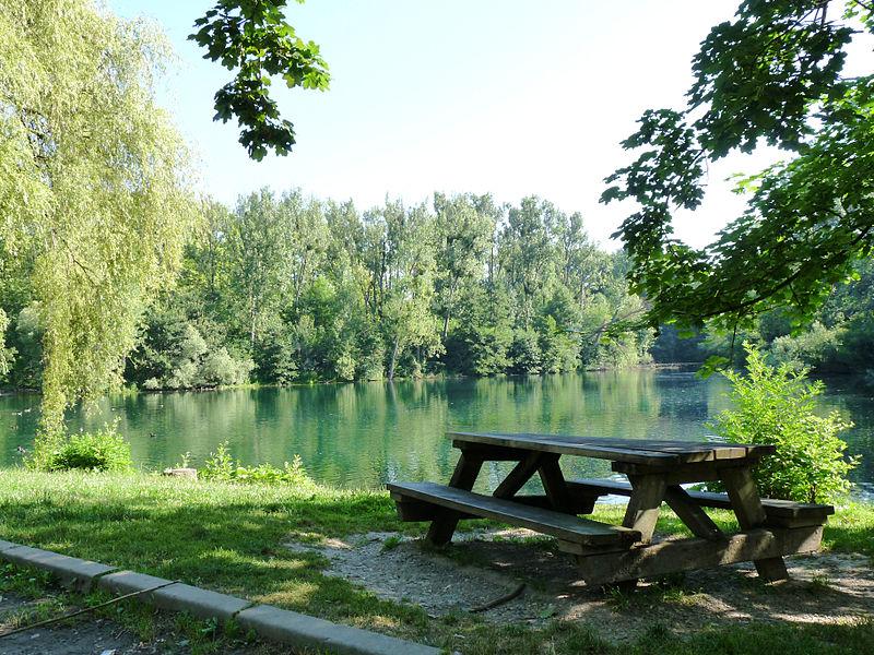 File:Forêt de la Robertsau-Karpfenloch (5).jpg