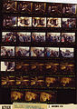 Ford B2163 NLGRF photo contact sheet (1976-11-02)(Gerald Ford Library).jpg