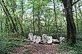 Forest @ Roc de Chère @ Talloires (34836765803).jpg