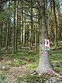 Forestry warning sign at Craignant mawr - geograph.org.uk - 1106032.jpg