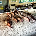 Fresh Fish at Maine Ave Fish Market - panoramio.jpg