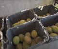 Fruta exótica en ecuador.png