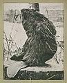 Fur Farming in Canada, J. Walter Jones, 1914 (page 106a-1).jpg