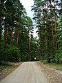 G. Miass, Chelyabinskaya oblast', Russia - panoramio (148).jpg