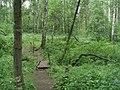 G. Miass, Chelyabinskaya oblast', Russia - panoramio (45).jpg