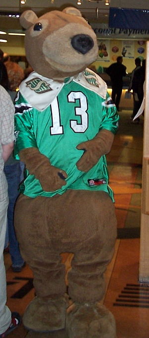 Saskatchewan Roughriders - Image: Gainer the Gopher