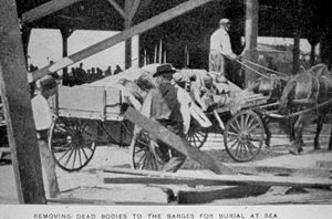 A horse and buggy transporting bodies