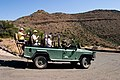 Game Drive Karoo National Park - Central Karoo, South Africa (3919196630).jpg