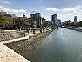 Gangi Hiroshima20190317.jpg