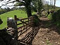 Gate on Moretonhampstead Bridleway 18 - geograph.org.uk - 1292394.jpg