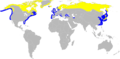Gavia stellata map.png
