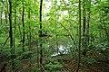 Geschützter Landschaftsbestandteil Schubertgrund in Sachsen.2H1A1097WI.jpg