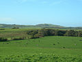 Girvan Valley near Crosshill - geograph.org.uk - 258458.jpg