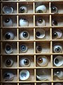 Glass Eyes on Display - Back to Backs - Birmingham - England - 02 (27611521933).jpg