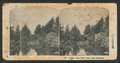 Golden Gate Park Pond, from Robert N. Dennis collection of stereoscopic views.png