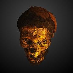 Goldened mummy head-AE AF 12533