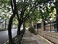 Gongye 4th Road in Nanshan, Shenzhen, Guangdong.jpg