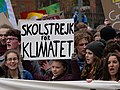 Greta Thunberg at the front banner of the FridaysForFuture demonstration Berlin 29-03-2019 09.jpg
