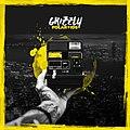 Grizzly - Polaroids - Cover.jpg