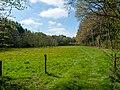 Gronsfurther Berge, Rendsburg (P1100719).jpg
