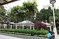 HK YL 元朗 Yuen Long 大陂頭休憩花園 Tai Pei Tau Rest Garden trees Feb 2017.jpg