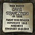 HL-013 David Strawczynski (1895).jpg