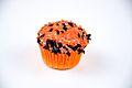 Halloween Cupcake 274 (5076903952).jpg