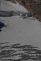 Hallstätter Gletscher5819.JPG