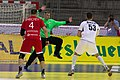Handball-WM-Qualifikation AUT-BLR 035.jpg
