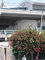 Hatachana IMG 5535.JPG
