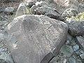 Hell's Canyon Petroglyphs, Wallowa-Whitman National Forest (26528817720).jpg