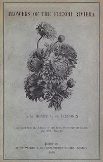 Henry de Vilmorin French botanist