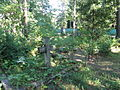 Hiiu baptistide kalmistu 4.jpg