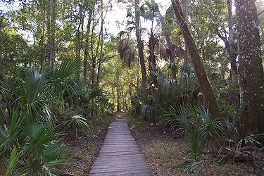 Hillsborough River State Park 9.jpg