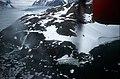 Horseshoe I - Homing Head (from Tw Ott).jpg