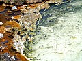 Hot spring pool in Hot Springs State Park - panoramio (1).jpg