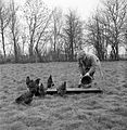 How To Keep Poultry- Advice To Chicken Keepers, UK, 1944 D18440.jpg